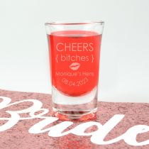 """Personalised Engraved """"Cheers Bitches"""" Hen's Party Shot Glasses Present"""